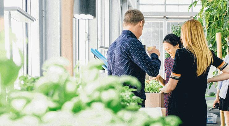 Qualité de vie au travail : ces start-up qui veulent changer la donne